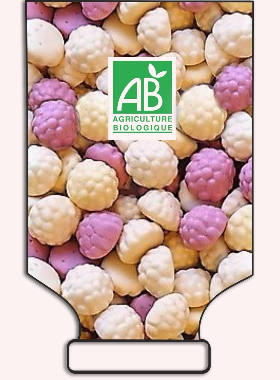 Bonbons saveurs yaourts fruités - en sac - réf.1028